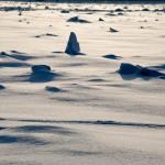 Фестиваль ледяных скульптур Империя льда