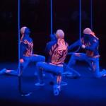 Цирк на Фонтанке воздушные гимнасты – Мещановы