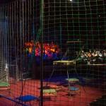 Цирк на Фонтанке аттракцион Один среди львов - Владислав Гончаров