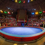 «Звезды магического манежа» в Цирке на Фонтанке
